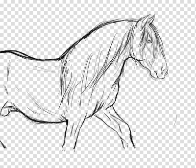 Arabian horse Line art Drawing Pony Rearing, unicorn head ...
