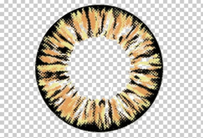 Circle Contact Lens Brown Contact Lenses Color PNG, Clipart, Base ...