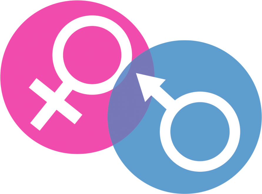 Gender Png Picture - Gender And Development Png , Transparent ...