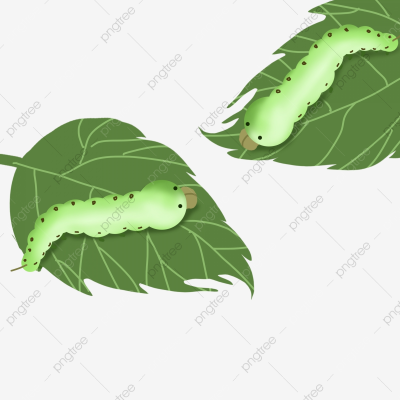 Spring Silkworm Decorative Pattern Green Big Silkworm, Spring ...