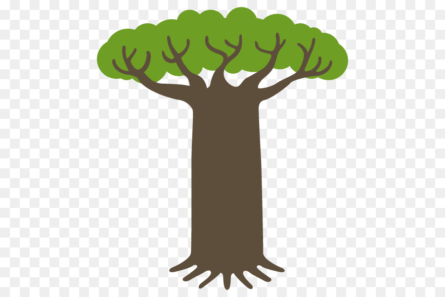 Baobab Tree png download - 600*600 - Free Transparent Baobab png ...