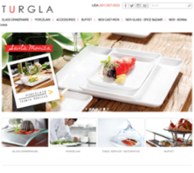 Turgla Competitors, Revenue and Employees - Owler Company Profile
