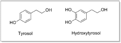 Chemical structures of tyrosol and hydroxytyrosol. | Download ...