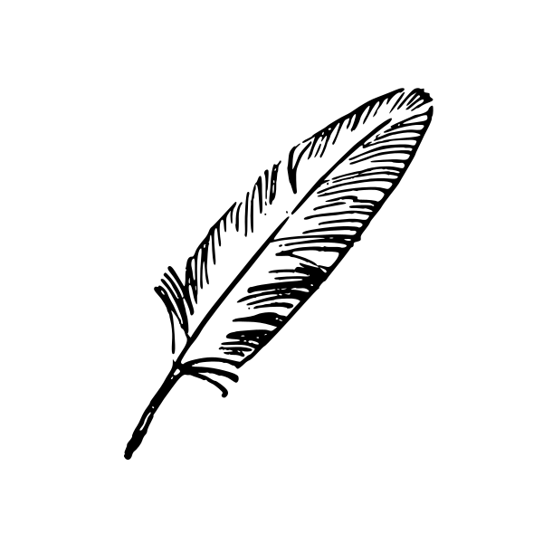 Feather vector png » PNG Image