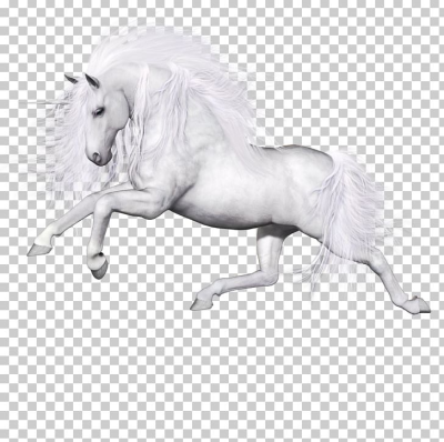 Ferghana Horse Unicorn Pegasus PNG, Clipart, Animal, Black And ...