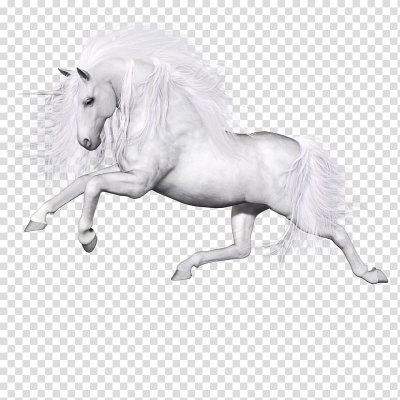 White horse illustration, Ferghana horse Unicorn Pegasus, Pegasus ...