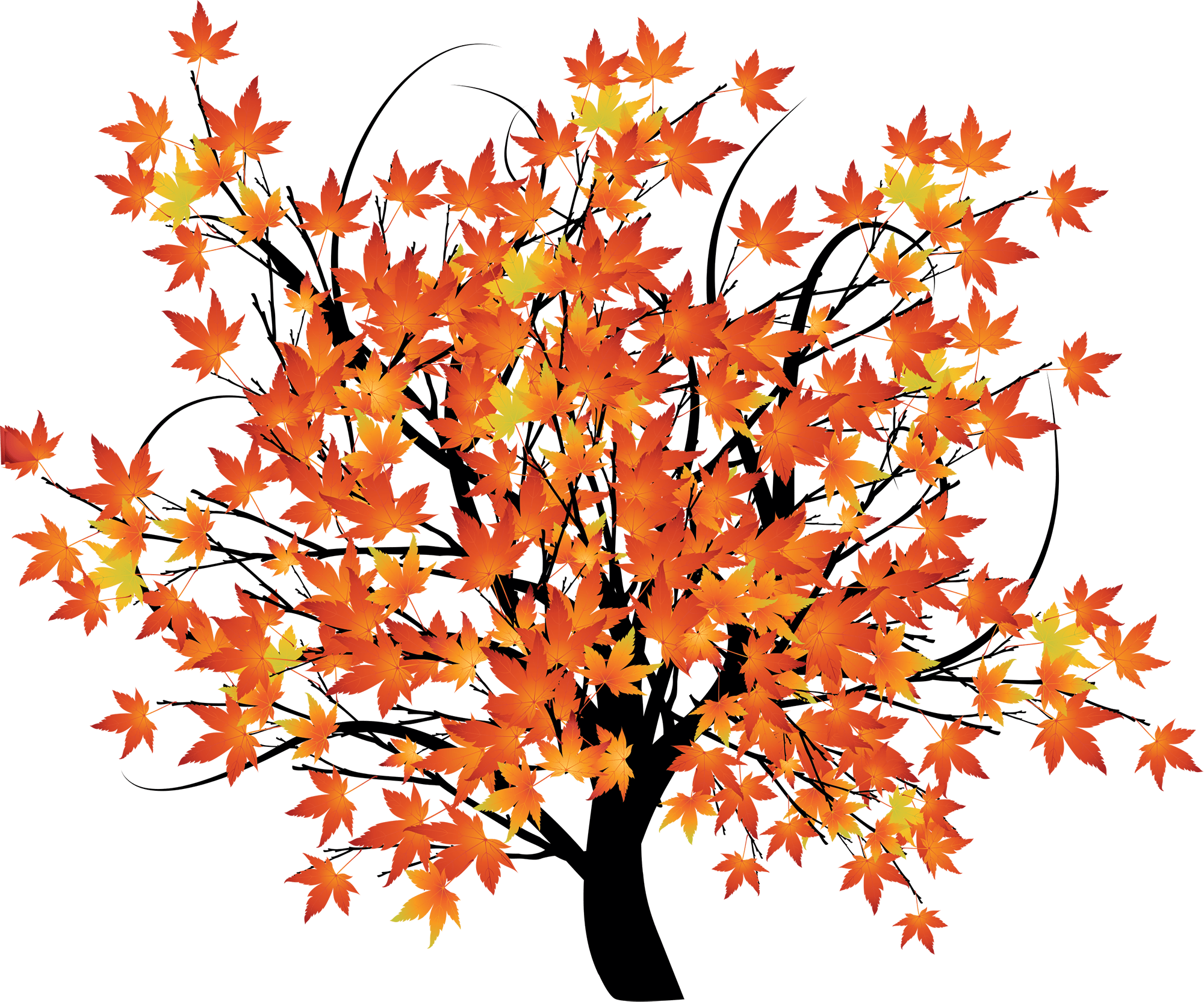 HD An Autumn Background Scene With Trees - Maple Tree Cartoon ...