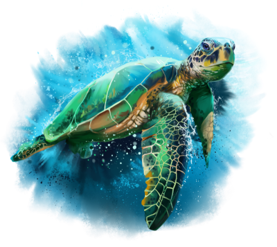 Pin by pngsector on Turtle PNG image and Clipart | Sea turtle ...