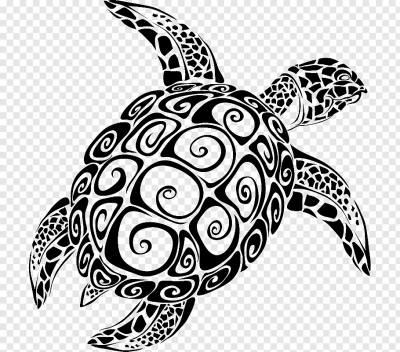 Sea turtle graphics The Turtle, turtle free png | PNGFuel