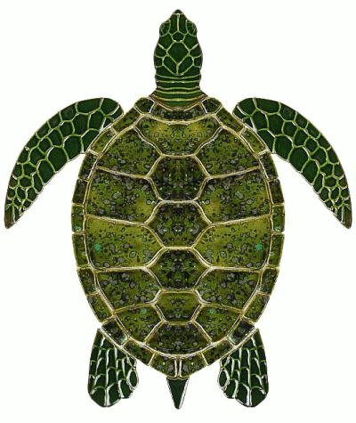 Sea turtle art - /animals/turtle/sea_turtle/Sea_turtle_art.png.html