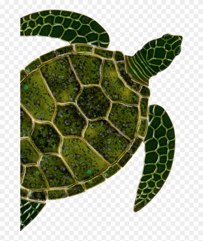 Sea Turtle Art Clipart Sea Turtle Tortoise - Sea Turtle Ceramic ...