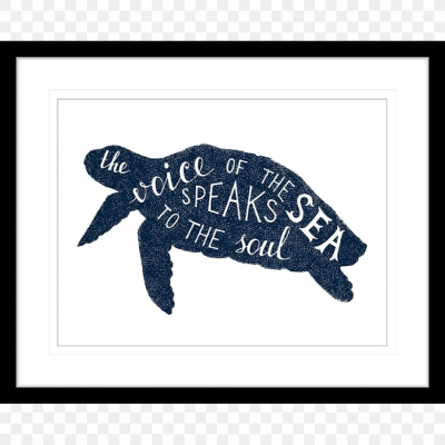Sea Turtle Silhouette, PNG, 1000x1000px, Sea Turtle, Art, Drawing ...
