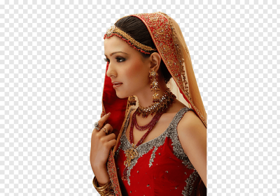 Bride Indian wedding clothes Wedding dress Make-up artist, bride ...