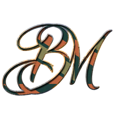 BM logo in png format - Hindi Graphics