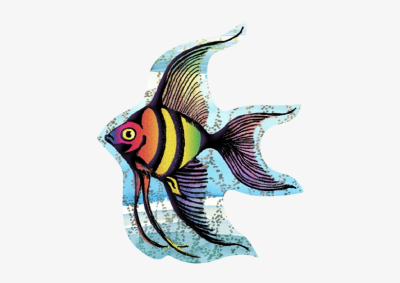Angel Fish - Angel Fish Tattoo Transparent PNG - 500x500 - Free ...