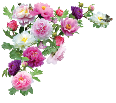 Flower HD PNG Transparent Flower HD.PNG Images. | PlusPNG