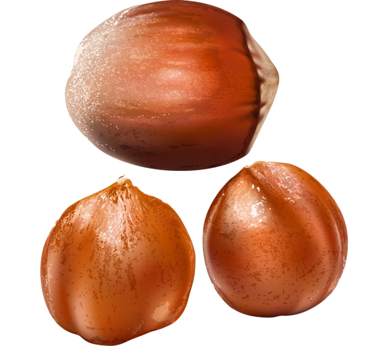 Chestnuts PNG Transparent