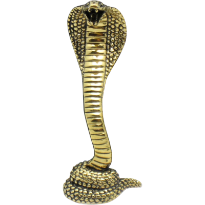 Cobra Snake PNG HD
