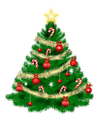 Christmas Tree Transparent Image
