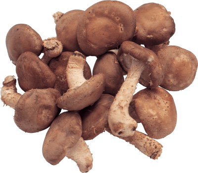 Mushrooms Png Image