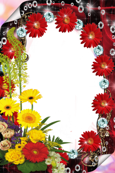 Red Flower Frame PNG File