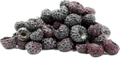 Black Raspberries File