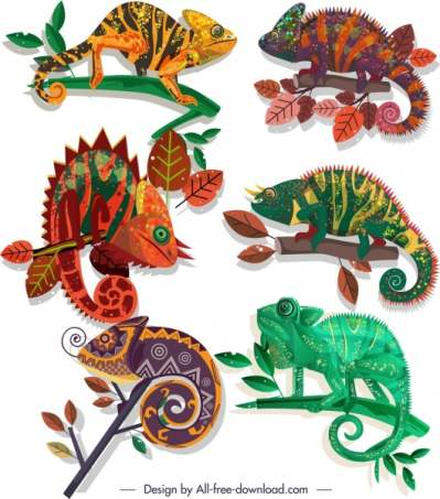 chameleon species icons colorful flat sketch 6840914