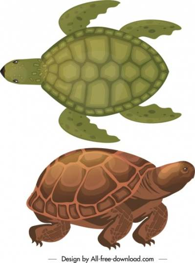 turtle species icons dark colored sketch 6840921
