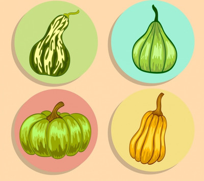 pumpkin-icons-collection-green-yellow-handdrawn-sketch_6831800